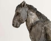 Schwarzes Pferd (Ausschnitt)